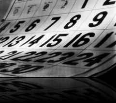 calendario-anual